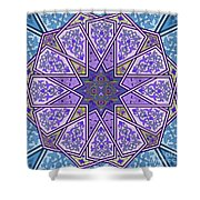 Pattern Art 006 Shower Curtain