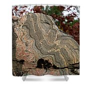 Pattern In A Gneiss Rock Shower Curtain
