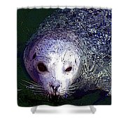 Patterned Seal Shower Curtain