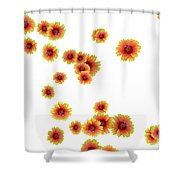 Patterns From Flowers Shower Curtain