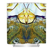 Patterns In Stone - 157 Shower Curtain