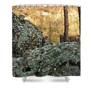 Pause For Dinner Shower Curtain