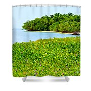 Pavilion Point Shower Curtain