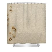 Paw And Footprint 1 Shower Curtain