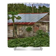 Pawpaw Patch Shower Curtain
