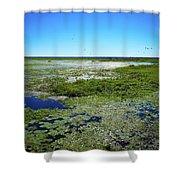 Paynes Prairie View Shower Curtain