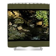 Peace And Security Shower Curtain