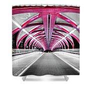 Peace Bridge Shower Curtain