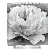 Peace In The Garden Shower Curtain