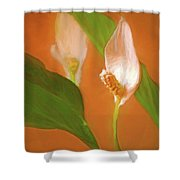 Peace Lily Grace 10 Shower Curtain