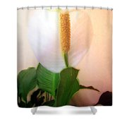 Peace Lily Luminous Shower Curtain