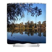 Peaceful Day At The Park Shower Curtain