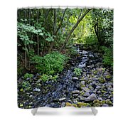 Peaceful Flowing Creek Shower Curtain