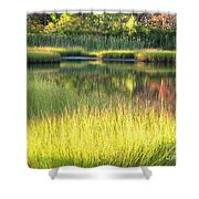 Peaceful Marsh Shower Curtain