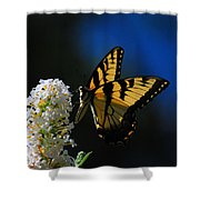 Peaceful Moment Shower Curtain