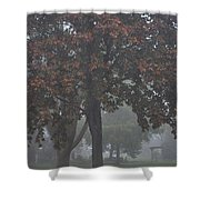 Peaceful Morning Mist Shower Curtain