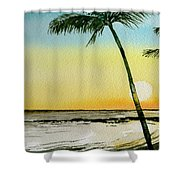 Peaceful Palms Shower Curtain