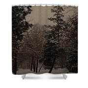 Peaceful Snow Dusk Shower Curtain
