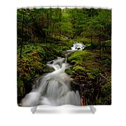 Peaceful Stream Shower Curtain by Mike Reid