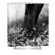 Peaceful Tranquility Shower Curtain