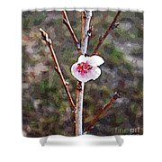 Peach Blossom Shower Curtain
