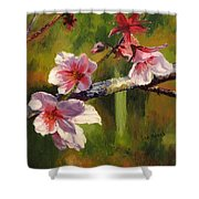 Peach Blossom Time Shower Curtain