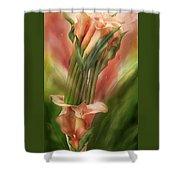 Peach Calla Lilies In Calla Vase Shower Curtain