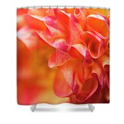 Peach Color Dahlia Shower Curtain