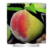 Peach Fuzz Shower Curtain