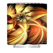 Peach Gold Nautilus Shower Curtain