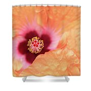 Peach Hibiscus - Macro Shower Curtain