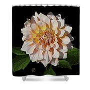 Peach-n-yellow Dahlia Cutout Shower Curtain