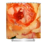 Peach Rose - Digital Painting Shower Curtain