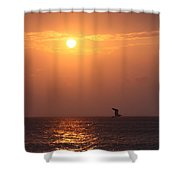 Peach Sunrise And Bird In Flight Shower Curtain