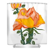Peaches And Creme Shower Curtain