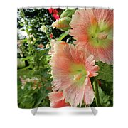 Peaches And Petals Shower Curtain
