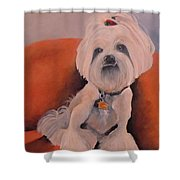 Peaches 'n Cream Shower Curtain