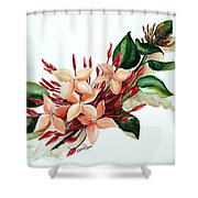 Peachy Ixora Shower Curtain