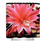 Peachy Pink Cactus Orchid Shower Curtain