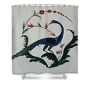 Peackok Shower Curtain