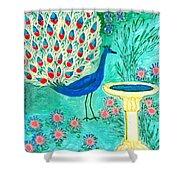 Peacock And Birdbath Shower Curtain by Sushila Burgess
