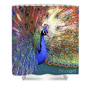 Peacock Beauty Colorful Art Shower Curtain