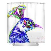 Peacock Closeup Shower Curtain