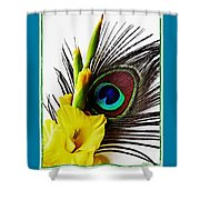 Peacock Feather And Gladiola 3 Shower Curtain