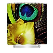 Peacock Feather And Gladiola Shower Curtain