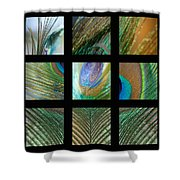 Peacock Feather Mosaic Shower Curtain
