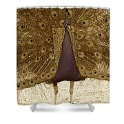 Peacock In Sepia Shower Curtain