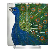 Peacock Iv Shower Curtain