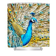 Peacock Paradise Shower Curtain