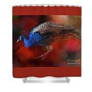 Peacock Profile Shower Curtain